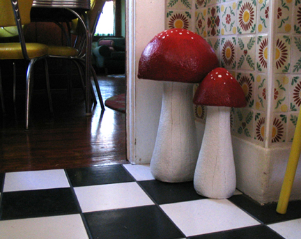 mushrooms in the kitchen